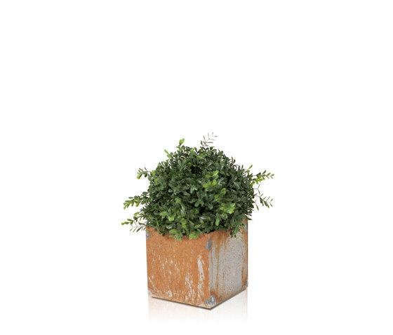 Linné 15x15 by Röshults | Flowerpots / Planters