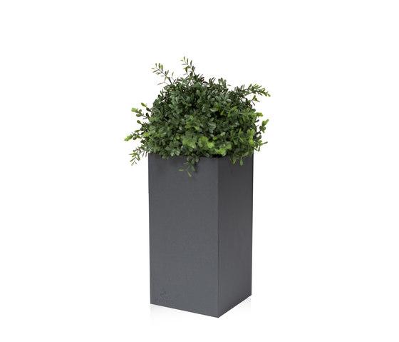 Linné 15x30 by Röshults | Flowerpots / Planters