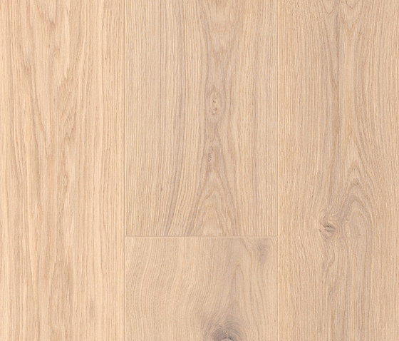 FLOORs Hardwood Oak superbianco basic by Admonter Holzindustrie AG | Wood flooring