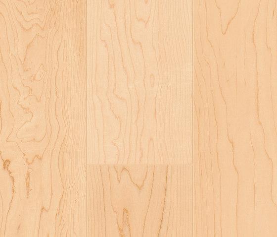 FLOORs Hardwood Canadian Maple elegance by Admonter Holzindustrie AG | Wood flooring