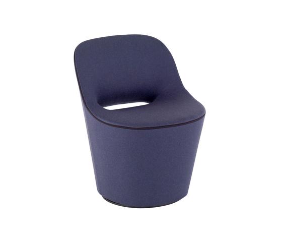 Eddy by Tacchini Italia | Restaurant chairs
