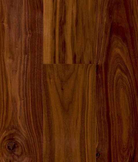 CLASSIC HARDWOOD American Walnut rustic by Admonter | Wood flooring