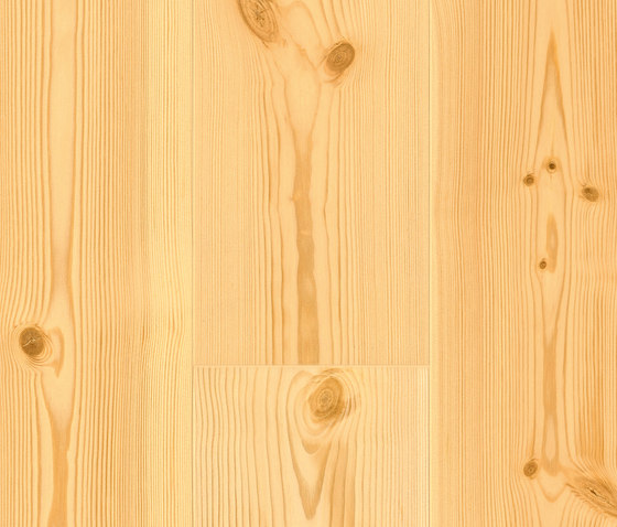 FLOORs Softwood Pine basic by Admonter Holzindustrie AG | Wood flooring