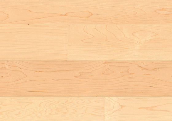 2BOND Canadian Maple Elegance by Admonter | Wood flooring