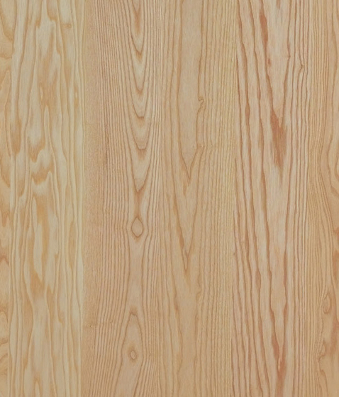 Panel European Ash by Admonter Holzindustrie AG | Wood panels