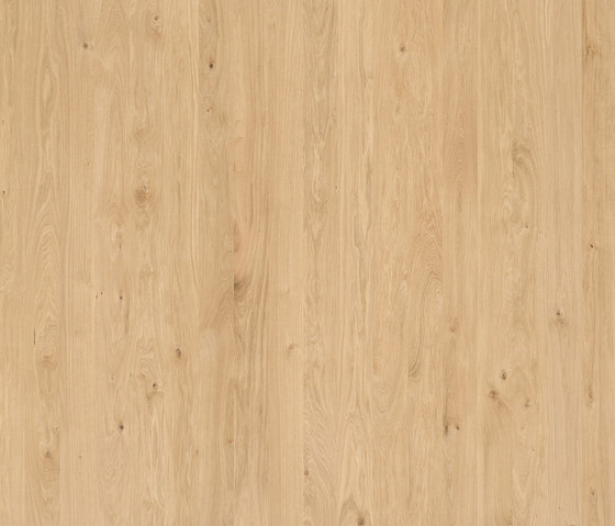ELEMENTs Oak by Admonter | Wood panels / Wood fibre panels
