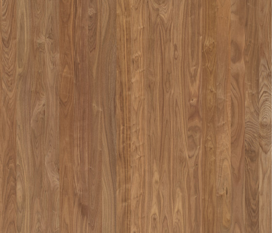 ELEMENTs American Walnut by Admonter Holzindustrie AG | Wood panels