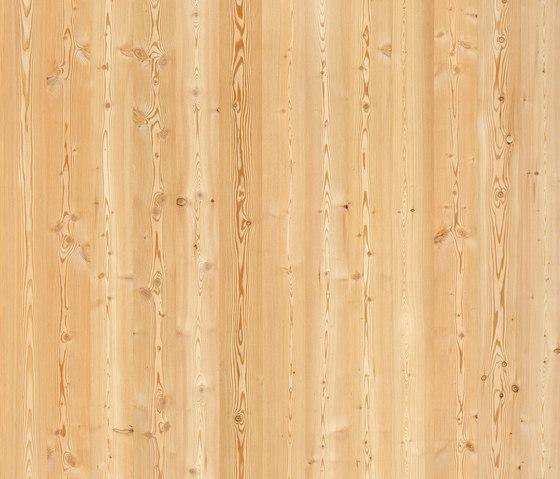 ELEMENTs Siberian Larch de Admonter Holzindustrie AG | Planchas de madera