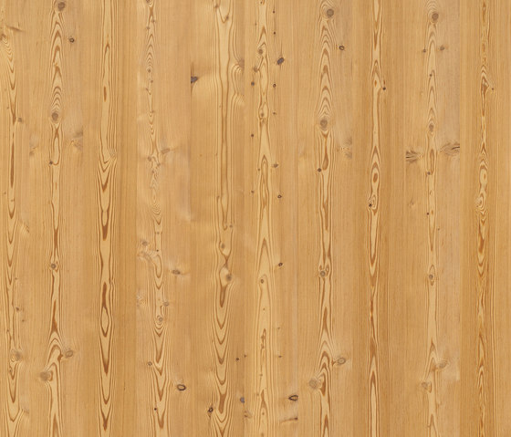 ELEMENTs Larch aged by Admonter | Panels