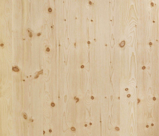 ELEMENTs Stone Pine by Admonter Holzindustrie AG | Wood panels