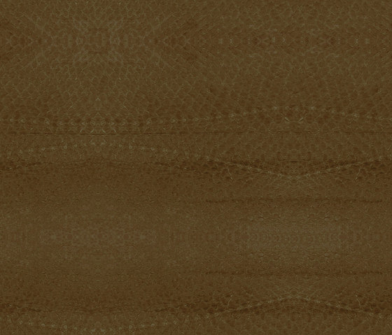 LL 1117 Nougat | uncoated by Nanai | Natural leather