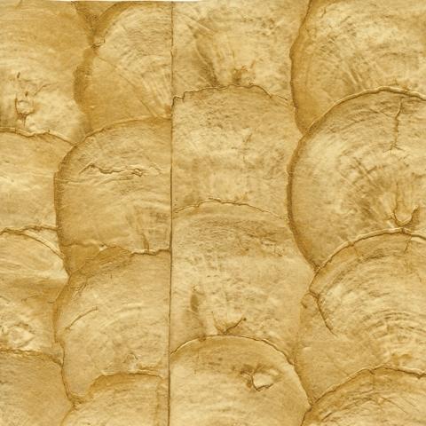 Shells VP 670 06 de Elitis | Revestimientos de paredes / papeles pintados