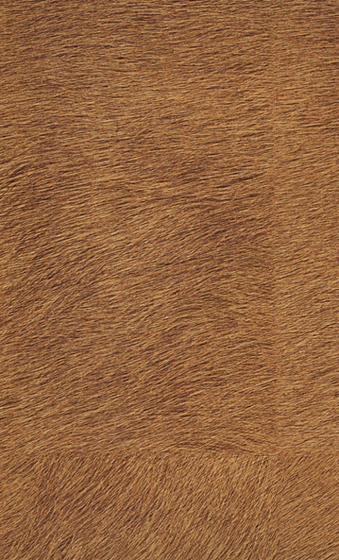 Natives | Movida VP 625 09 by Elitis | Wall coverings / wallpapers