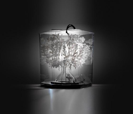 Fiorellina de Slamp | Éclairage général