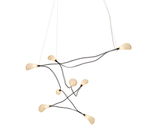 Dapple Ceiling Eight by ANGO | General lighting