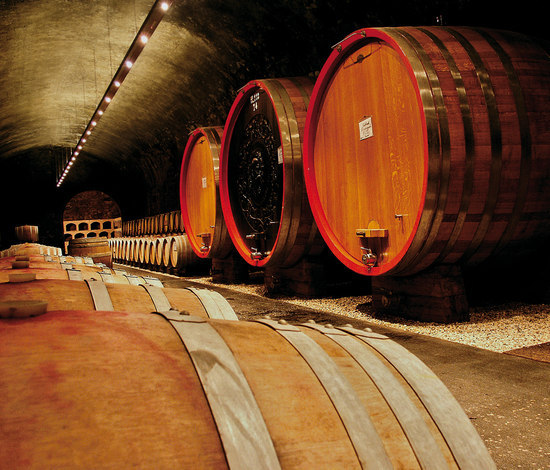 Caldaro Winery by ewo | General lighting