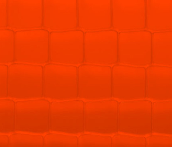 ViewPan PMMA red de Wacotech | Panneaux