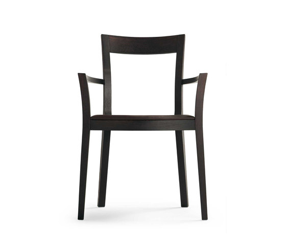 Sissi Armchair by Segis | Multipurpose chairs