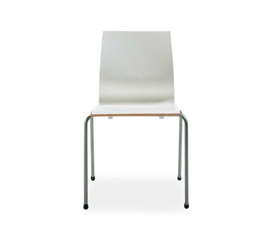 Bloom by Segis   Multipurpose chairs
