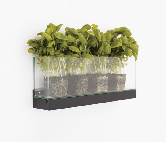 Front Plant FR2 50, FRGLT250 von Karl Andersson | Pflanzen-Halter / -Ständer