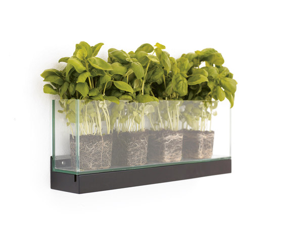 Front Plant by Karl Andersson | Plant holders / Plant stands