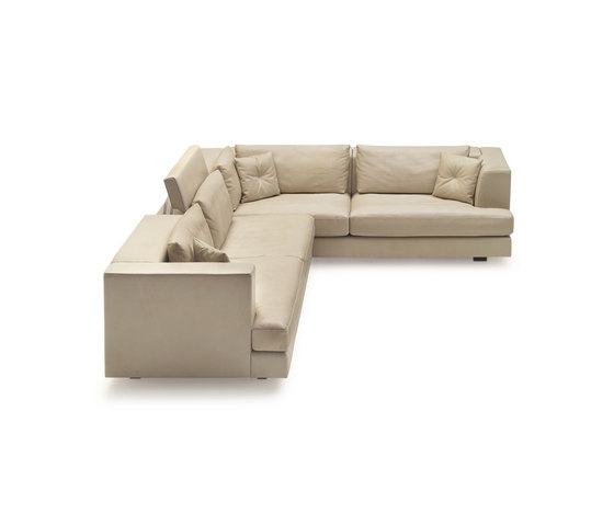 DS 41 by de Sede | Lounge sofas
