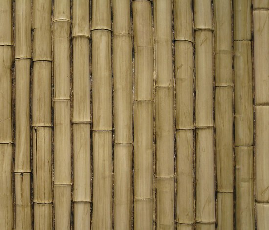 Bamboo Paneling Product : Bamboo panel by total system ochre green product