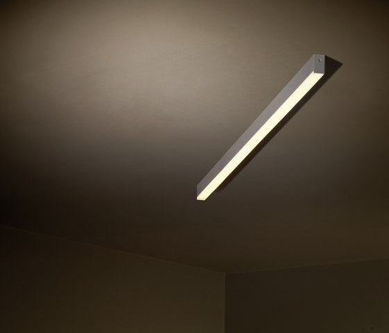 1 U by TAL | General lighting