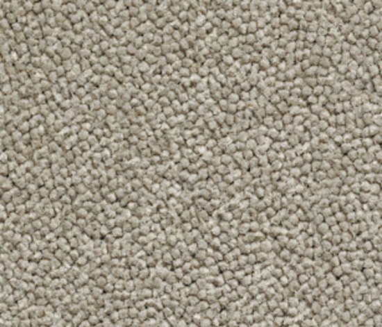 Lux 3000-40022 by Carpet Concept | Rugs / Designer rugs