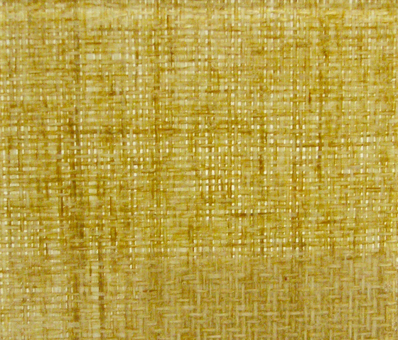 Glasswood | Bamboo by Conglomerate | Decorative glass