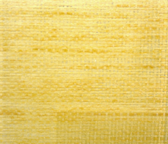 Glasswood | Bamboo 2 by Conglomerate | Decorative glass