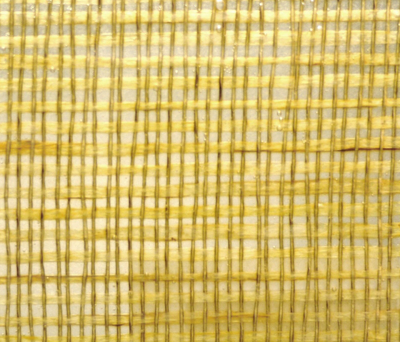 Glasswood | Bamboo 3 by Conglomerate | Decorative glass