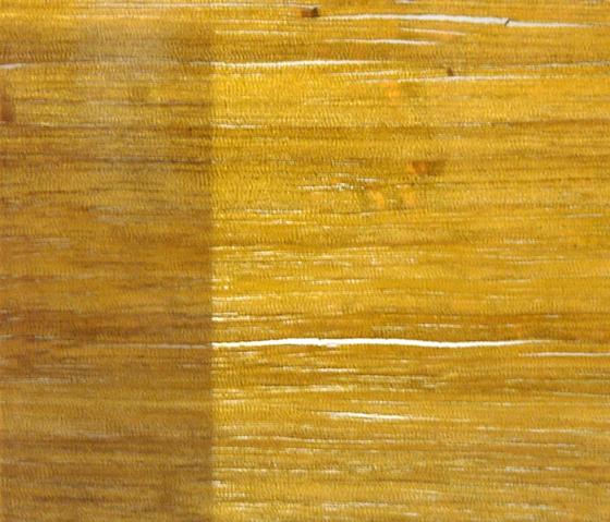 Glasswood | Oakwood de Conglomerate | Verre décoratif