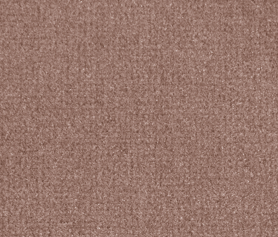 Isy V Copper by Carpet Concept | Carpet rolls / Wall-to-wall carpets