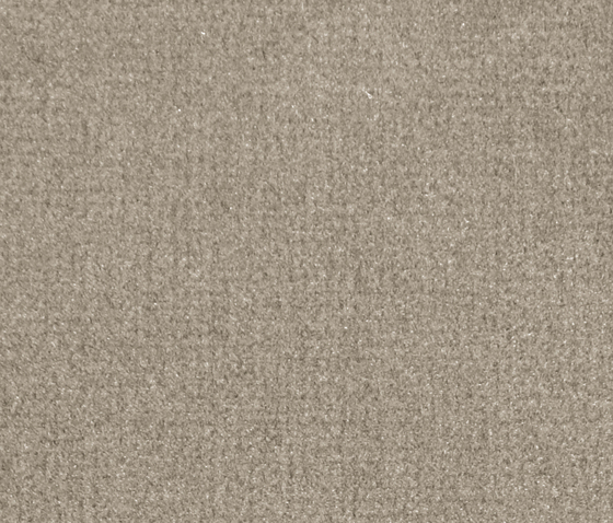 Isy V Dune by Carpet Concept | Wall-to-wall carpets