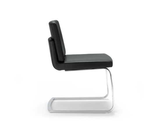 Rolf Benz 225 by Rolf Benz | Visitors chairs / Side chairs
