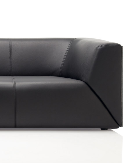 Rolf Benz 244 by Rolf Benz | Lounge sofas