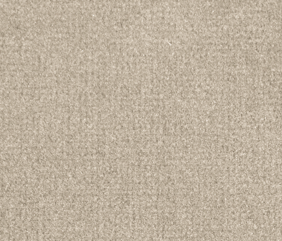 Isy V Sand by Carpet Concept | Wall-to-wall carpets