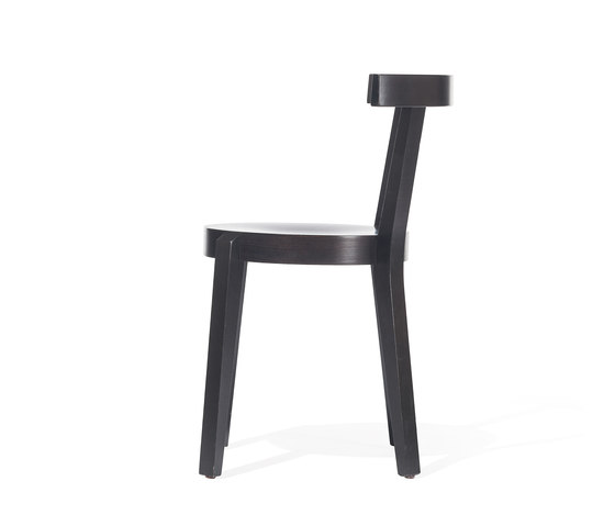 Punton Chair by TON | Restaurant chairs
