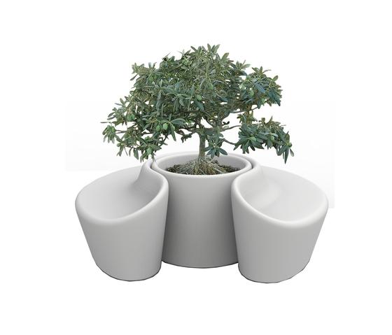 Sardana de Qui est Paul? | Macetas plantas / Jardineras