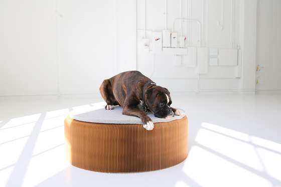 felt pad von molo | Sitzauflagen / Sitzkissen