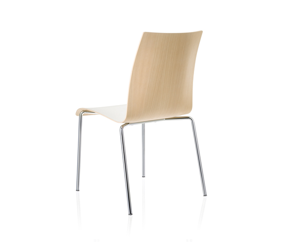 fina 6408 by Brunner | Multipurpose chairs