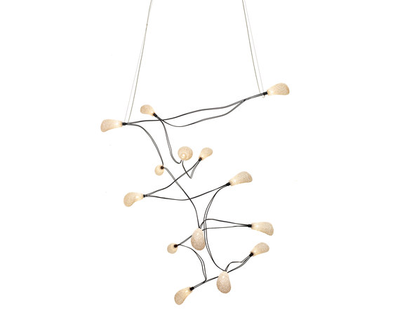 Dapple Ceiling Fourteen by ANGO | General lighting