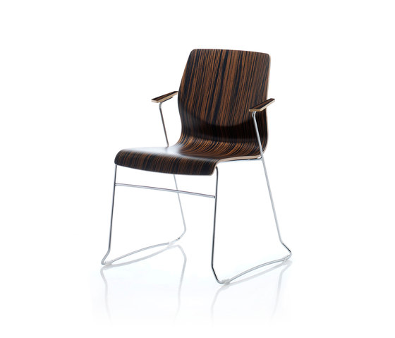 Alba by Forma 5 | Multipurpose chairs