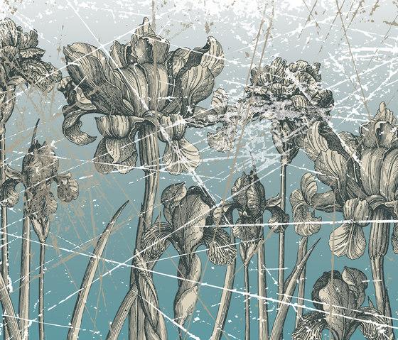 Herbarium by Wall&decò | Wall art / Murals