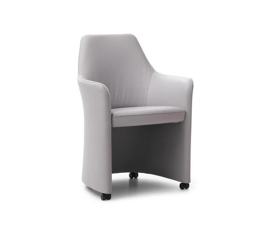 Lirio Chair di Leolux | Sedie