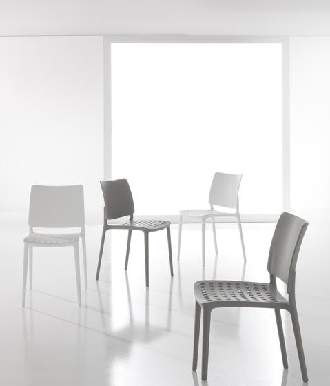 Blues by Bonaldo | Canteen chairs