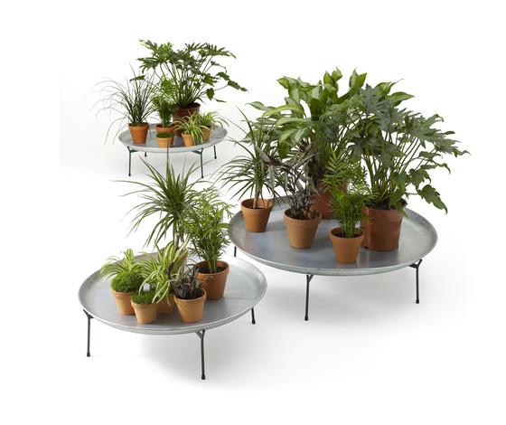 Green Trays by OFFECCT | Plant holders / Plant stands