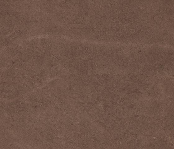 ceramic flooring hard floors alsace brown porcelanosa. Black Bedroom Furniture Sets. Home Design Ideas