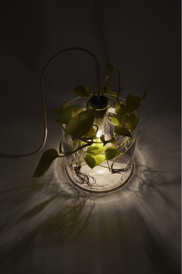 Vase & Leuchte by dua | General lighting